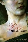 Biss-zum-Morgengrauen-ISBN-9783551581495